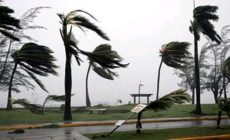 Siapa Menabur Angin Bersiaplah Menuai Badai