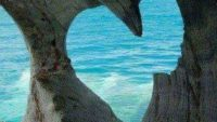 Cinta dan Rindu